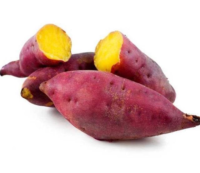 红薯自动包装视频