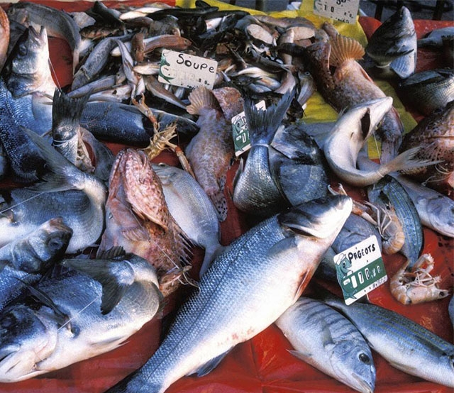 鱼类多级重量分选视频